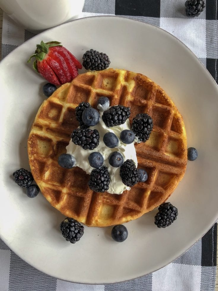 low carb and gluten free belgian waffle