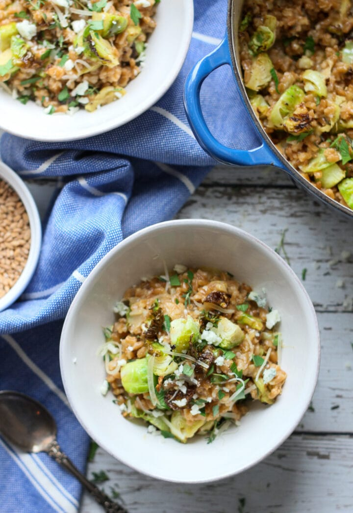 overhead view of farro risotto with brussels sprouts and gorgonzola in a white bowl